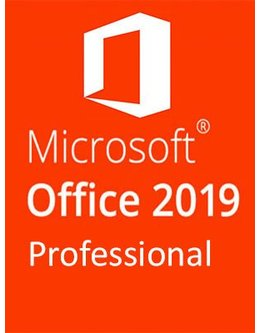 microsoft office 2019 professional plus fuer schul